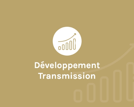 IRDI Capital Investissement - Développement Transmission